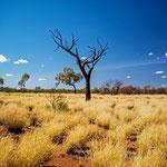 Das Australische Outback