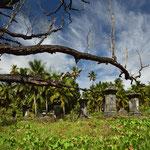 "Auf dem Friedhof der "" L´Union Estate"" auf La Digue"