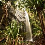 """Ein Tropischer Wasserfall im """" Vallee de Mai """""""