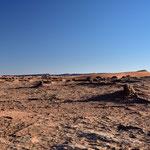 Ödes Wüstenland
