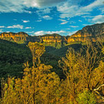 Abendlicht in den Blue Mountains aus dem Canyon.