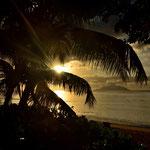 Sundowner unter Palmen an der Beau Vallon auf Mahe