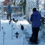 Heute dürfen die Welpen in den Garten außerhalb des Welpenauslaufes und so richtig im frischen Pulverschnee toben.