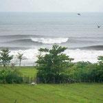 Rumah dijual di Medewi. Rumah di jual di Bali Barat