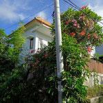 Dijual rumah di Jimbaran