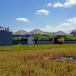 Villa di Ubud dijual. Sayan villa dijual