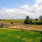 Dijual properti di Canggu