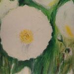 Blume    Acryl auf Leinwand  60 x 60  CHF 500