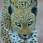 Gepard     Acryl auf Leinwand  40 x 90  CHF 1'000