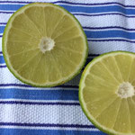 A bergamot, cut in halves