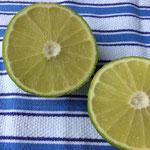 Bergamotte geschnitten