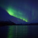 Polarlicht und der Jupiter spiegeln sich im Øksfjord, Norwegen. 2014 © Robert Hansen. Link in die Fotogalerie