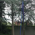 """""""Blau machen"""" Konrad Wallmeier"""