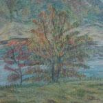 """""""Paysage d'automne"""" pastel sec 30x40"""