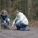 Auslastung auch für ältere Hunde