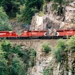 Juli 2019: Güterzug unterwegs im Westen Canadas. (Aufnahme vom August 1995.)