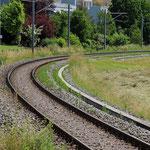 Schweizer-Eisenbahnen Bahnhof Bronschhofen.