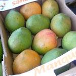 Reife Mangos