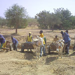 Lycée Bethléhem Piéla, Burkina Faso - Sand aufladen -  aus 2008