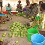 Frauen sortieren die Mangos