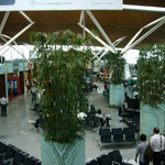 デリーの空港はとても広くてきれい!国際線のターミナルははるか遠くで見えません!