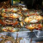 チェンマイはかなりの内陸ですが(汗)、でも海鮮はおいしいです。