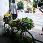 自転車に花がいっぱい。