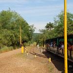 この列車で滝の近くまで移動します。途中はかなり険しいジャングルです。