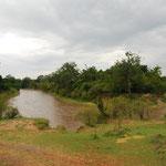 よくTVでヌーが大移動している川です。向こう岸はタンザニア、セレゲンティ国立公園です。