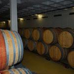 貯蔵庫も見せてくれます。1つの樽から400本のワインが取れるそうです。