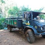 このトラックに乗ってジャングルを走ります。