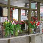 雪がちらつくプラハですが、花屋さんにはチューリップが。春はそこまで来ています。