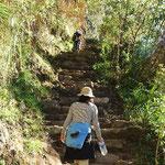 ワイナピチュに登ります。