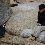 1匹のペンギンさんがこちらに向かって歩いてきます。うう。。。握手したいけどガマン。