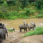 これから象に乗って川を渡ります。