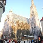 旧市街の真ん中にあるシュテファン大聖堂せっかく来たのに原寸大の写真が貼り付けてある~。そりゃないゼ!