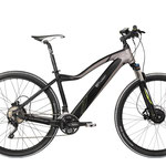 "Evo Snow 29"" Allrad E Bike"