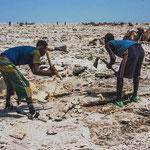 Non loin de cette dépression, désert de sel. Le peuple Afar exploitait encore ce lieu fin 2014