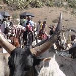 Au marché de Bati, renommé pour son bétail, nord est de Addis