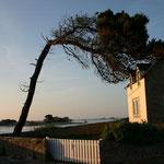 L'île aux femmes Bretagne