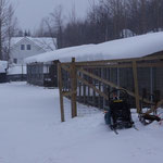 Das ist die Unterkunft de Huskys.