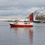 Fischerboot in Svolvaer