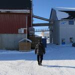Wir erkunden das Gelände der Fischfabrik