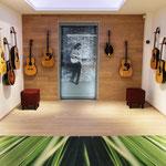 Musikhaus Thomann (Europas größtes Musikhaus), Treppendorf / Edelgitarrenabteilung - Komplette Gewerke inkl. Beleuchtung – Mobiliar und Schreinerarbeiten, 2011