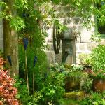 jardin à la ferme des ânes : le puits