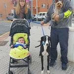 PAU adoptado en Cantabria.