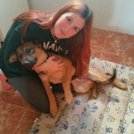 MISTY, adoptada en San Juan de Aznalfarache (Sevilla).