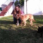 EDISON adoptado en Dos Hermanas, Sevilla.