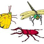リアル昆虫2