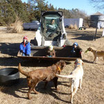 Bobcat ride at the farm with Aunt Michelle